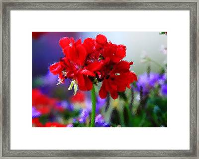 Royal Colors Through The Glass Framed Print by Toni Hopper