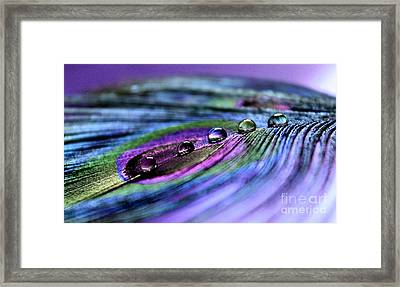 Soul Reflections Framed Print