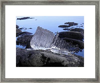 Framed Print featuring the photograph Royal Ice Creature by Sami Tiainen