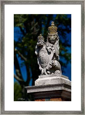 Royal Lion Framed Print by Christopher Holmes