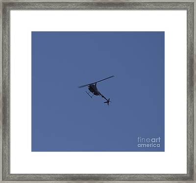 Royal Motorcade Single Framed Print by Donna Munro