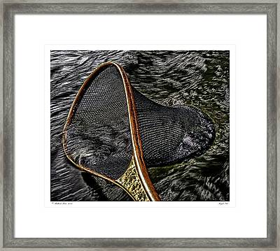 Framed Print featuring the photograph Royal Net by Richard Bean