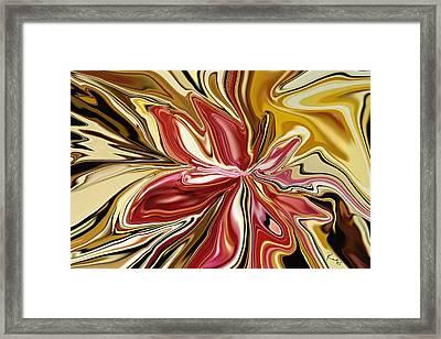 Royal Orchid Framed Print