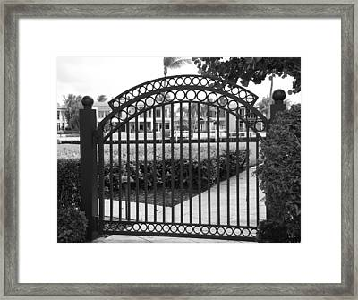 Royal Palm Gate Framed Print by Rob Hans