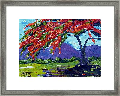 Royal Poinciana Palette Oil Painting Framed Print by Maria Soto Robbins