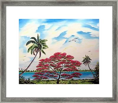 Royal Poinciana Tree 2 Framed Print