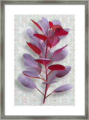 Royal Purple Framed Print by Ivana Westin