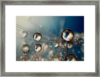 Framed Print featuring the photograph Royal Sea Blue Drops by Sharon Johnstone
