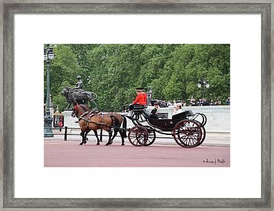 Royal Sighting Framed Print by Azra Malik