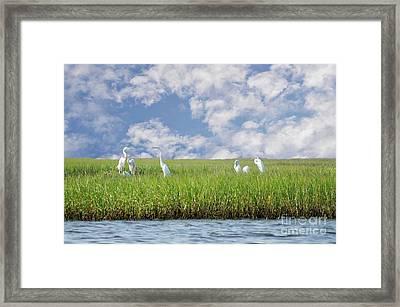 Rsvp Egrets Only Framed Print by Benanne Stiens
