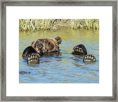 Rub A Dub Dub A Bear In His Tub Framed Print