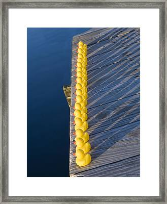 Rubber Duck Swim Team Framed Print