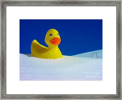 Rubber Duckie In Snow Framed Print