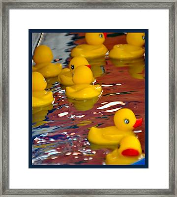 Rubber Duckies Framed Print