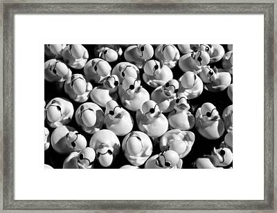 Rubber Duckies Framed Print by Todd Klassy