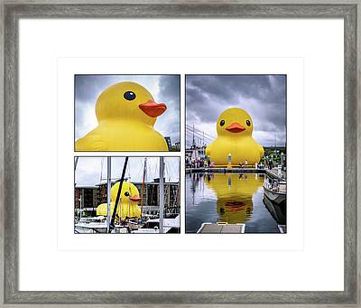 Rubber Ducky Collage 2 Framed Print