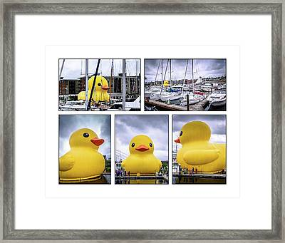 Rubber Ducky Collage Framed Print