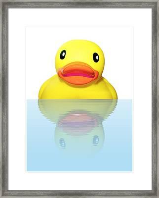 Rubber Ducky Framed Print by Karen Wallace