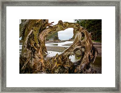 Ruby Beach Driftwood 2007 Framed Print