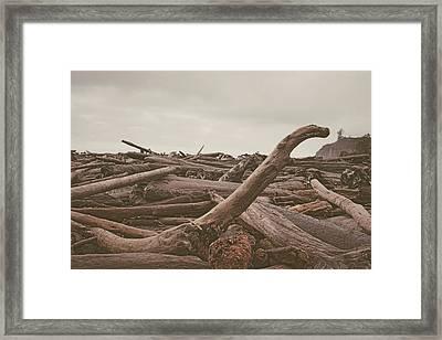 Ruby Beach No. 10 Framed Print