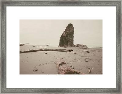 Ruby Beach No. 16 Framed Print