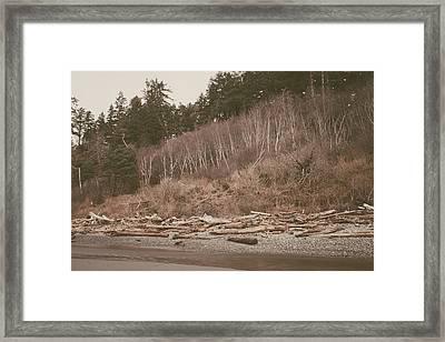 Ruby Beach No. 18 Framed Print