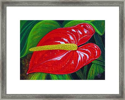 Ruby Holiday Framed Print