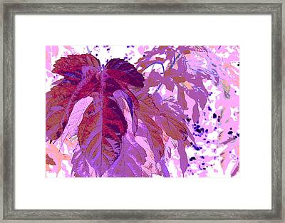 Ruby Leaves Framed Print by Richard Coletti