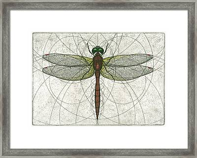Ruby Meadowhawk Dragonfly Framed Print
