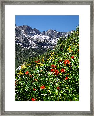 Ruby Mountain Wildflowers - Vertical Framed Print by Alan Socolik