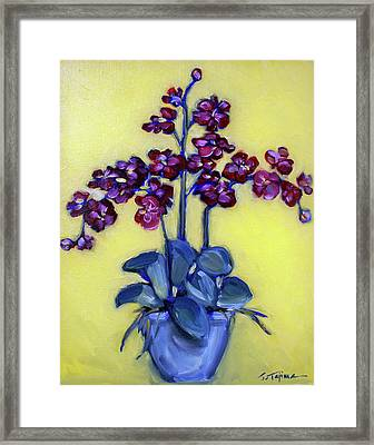 Ruby Red Orchids Framed Print by Sheila Tajima
