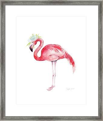 Ruby Rose Framed Print by Stephie Jones