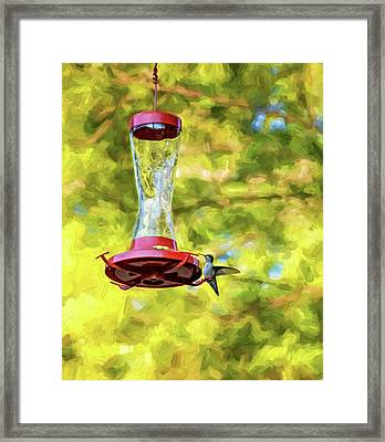 Ruby-throated Hummingbird 2 - Impasto Framed Print by Steve Harrington