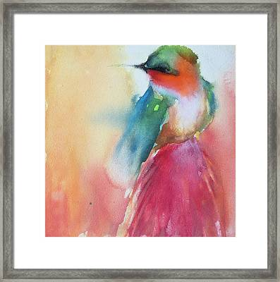 Ruby Throated Hummingbird On A Red Hot Poker Flower Wip Framed Print