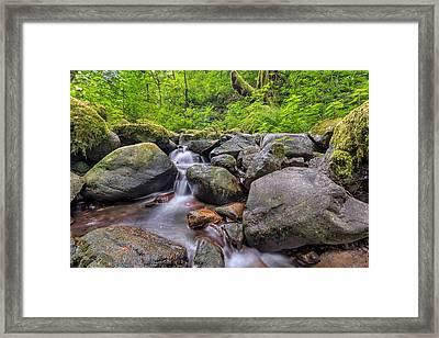 Ruckel Creek Framed Print by David Gn