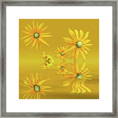 Framed Print featuring the photograph Rudbekia Yellow Flowers by David French