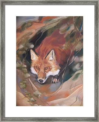 Rudy Adult Framed Print
