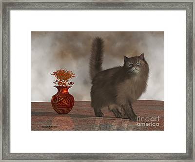 Rufus The House Cat Framed Print by Corey Ford