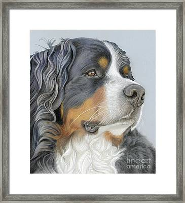 Framed Print featuring the painting Regal And Relaxed by Donna Mulley
