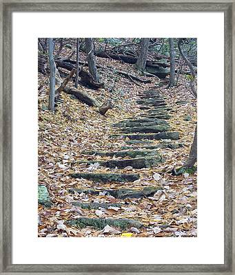 Framed Print featuring the photograph Rugged Path by Alan Raasch