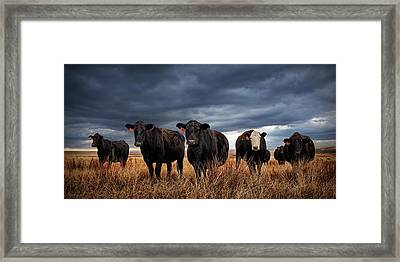 Rugged Framed Print by Thomas Zimmerman