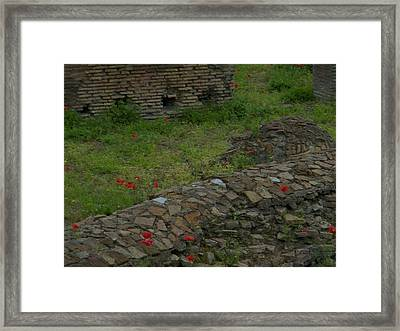 Framed Print featuring the photograph Ruins In Rome by Manuela Constantin