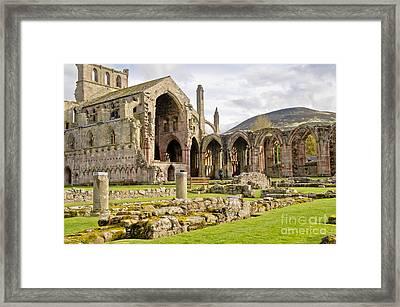Ruins. Melrose Abbey. Framed Print