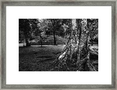 Framed Print featuring the photograph Ruins Of Tikal by Yuri Santin