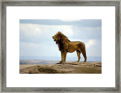 Ruler Framed Print