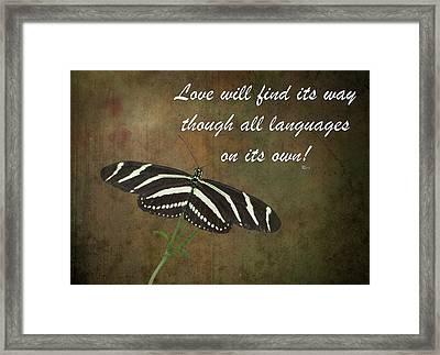 Rumi Quote-11 Framed Print