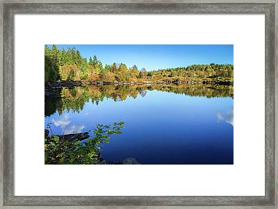 Ruminating The Fall Framed Print