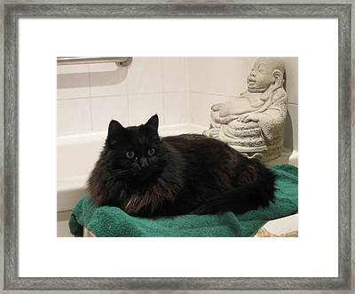 Framed Print featuring the photograph Rumnles With Buddha by AJ Brown