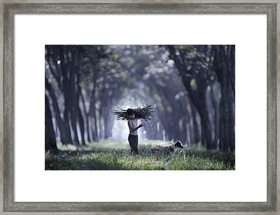 Rumpin Framed Print by Andre Arment