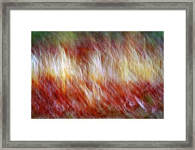 Run Like Hell Framed Print by Linda Sannuti
